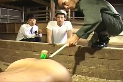 (recent raunchy) gay Milk Farm-01