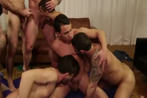 Rocco  Breeding Party raw