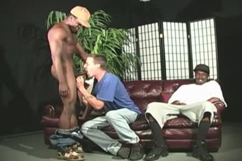 biggest Cocked Blacks Assfucking A White man