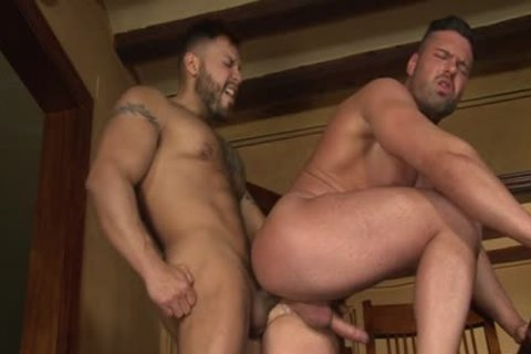 Latin Bear oral-job With sperm flow