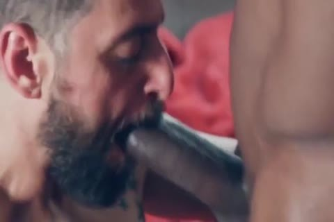 desirous gay clip With giant ramrod, bareback Scenes