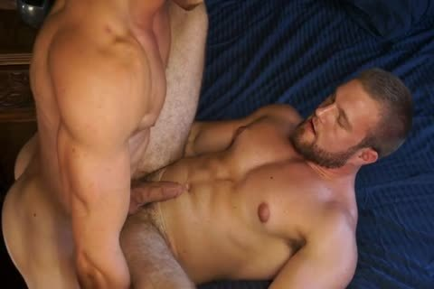Free gay muscle video clips